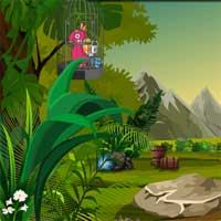 Free online flash games - KnfGame Rescue Red Macaw Bird game - Games2Dress
