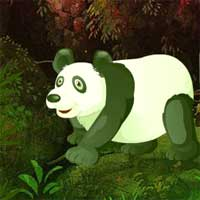 Free online flash games - Giant Panda Forest Escape game - Games2Dress