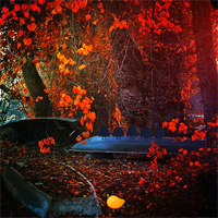 Free online flash games - Mirchi Games Red Autumn Forest game - Games2Dress