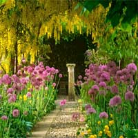 Free online flash games - KnfGame Escape From the Flower Garden game - Games2Dress