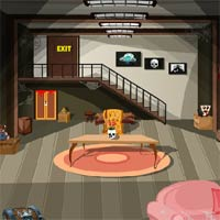Free online flash games - Nits Dont Think To Enter game - Games2Dress