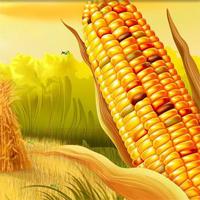 Free online flash games - HOG Hidden Corn Grasshopper game - Games2Dress