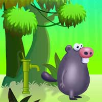 Free online flash games - GamesClicker Guinea Pig Adventure game - Games2Dress