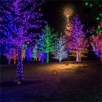 Free online flash games - HOG Night Party Hidden Wreath game - Games2Dress