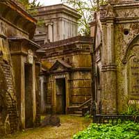 Free online flash games - MirchiGames Highgate Cemetery Bird game - Games2Dress
