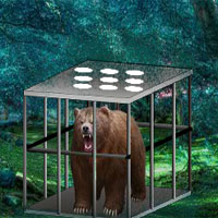 Free online flash games - Bear Escape 8BGames game - Games2Dress