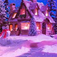 Free online flash games - HOG Night Christmas Hidden Snowman game - Games2Dress