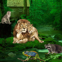 wild animals games